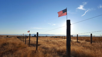 Several small American flags on top of fence posts in a field.