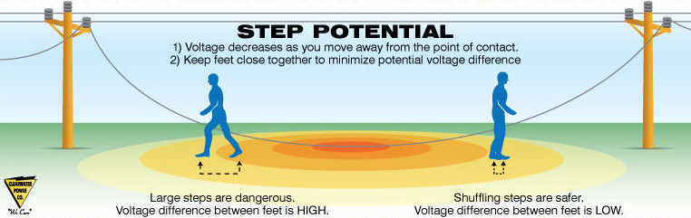 Graphic showing two figures by a fallen power line. Step potential = 1. voltage decreases as you move away from the point of contact. 2. Keep feet close together to minimize potential voltage difference. Shuffling steps are safer. Voltage difference between feet is low. Large steps are dangerous. Voltage difference between feet is high.