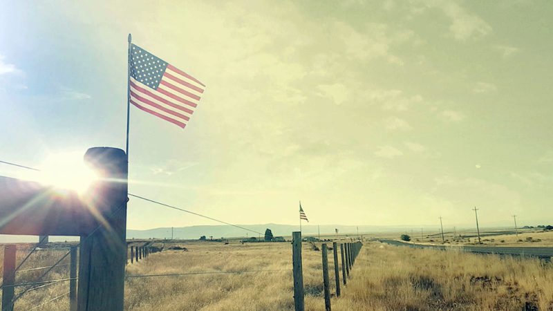 American flags on fence posts in a field